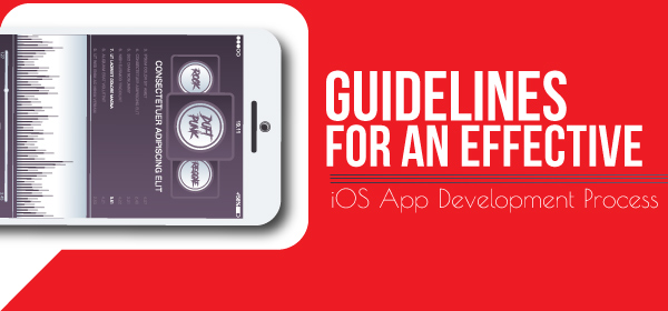Guidelines For an Effective iOS App Development Process