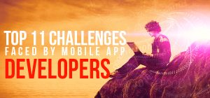 challenges faced by developers